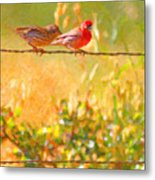 Two Birds On A Wire Metal Print by Wingsdomain Art and Photography