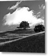 Two Brothers Metal Print