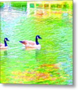 Two Canadian Geese In The Water Metal Print