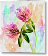 Two Clover Flowers With Pastel Shades. Metal Print
