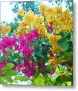 Two Color Flowers Metal Print