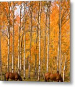Two Colorado High Country Autumn Horses Metal Print