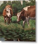 Two Cows By A Pond Metal Print