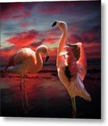 Two Flamingos Metal Print
