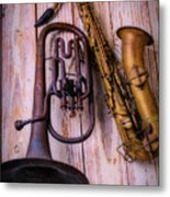 Two Horns Metal Print