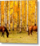 Two Horses In The Colorado Fall Foliage Metal Print