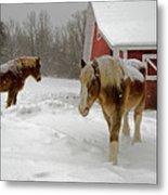 Two Horses In Winter Metal Print