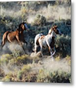 Two Horses Running Metal Print