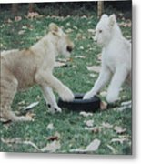 Two Lion Cubs Playing Metal Print