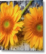 Two Lovely Sunflowers Metal Print