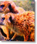 Two Meerkats . Photoart Metal Print by Wingsdomain Art and Photography