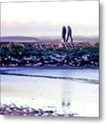Two Men Went For A Walk Metal Print