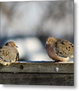 Two Mourning Doves Metal Print