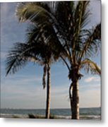 Two Palms And The Gulf Of Mexico Metal Print