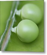 Two Peas In A Pod Metal Print