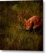 Two Piglets Metal Print