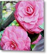 Two Pink Camellias - Digital Art Metal Print