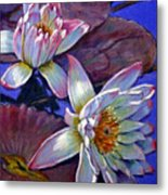 Two Pink Water Lilies Metal Print