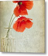Two Poppies In A Glass Vase Metal Print