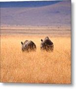 Two Rhino's Metal Print