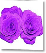 Two Roses Violet Purple And Enameled Effects Metal Print