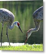 Two Sandhills By The Water Metal Print