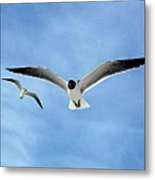 Two Seagulls Against A Blue Sky Metal Print