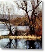 Two Souls Reflect Metal Print by Janine Riley