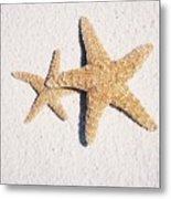 Two Starfish On The White Sand Metal Print