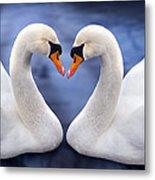 Two Swans Metal Print