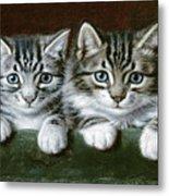 Two Tabby Kittens  Metal Print