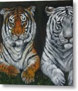 Two Tigers Oil Painting Metal Print