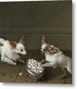 Two Toy Spaniels At A Sugar Bowl Metal Print