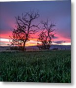 Two Trees In A Purple Sunset Metal Print
