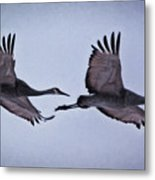Two Under The Moon Metal Print