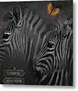 Two Zebras Metal Print