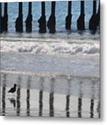 Uncaged Metal Print