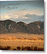 Under  Big Skies Of Montana Metal Print by Doug van Kampen, van Kampen Photography