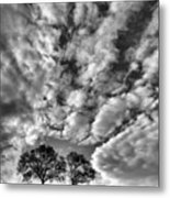 Under Cover In Black And White Metal Print