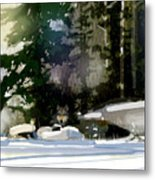 Under Surveillance Metal Print
