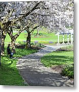 Under The Cherry Blossom Tree Metal Print