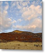 Under The Colorado Sky Metal Print