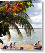Under The Palms In Puerto Rico Metal Print