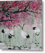 Under The Snow Plums 2 Metal Print