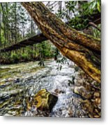 Under The Swinging Bridge Metal Print