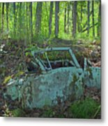 Under The Trail Metal Print