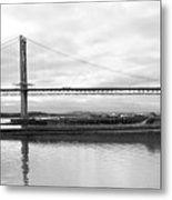 Under The Wing Metal Print