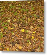 Undergrowth, Leaves Carpet. Metal Print