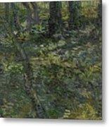 Undergrowth Saint Remy De Provence  July 1889 Vincent Van Gogh 1853  1890 Metal Print
