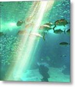 Underwater Background With Sunbeams Metal Print